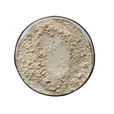 Best Non-Gmo Rice Protein Powder Suppliers in China