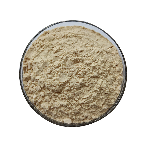 Papaya Extarct enzemy Powder