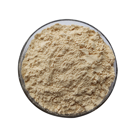 Low Price Wholesale Natural Hemp Seed Protein in Stock