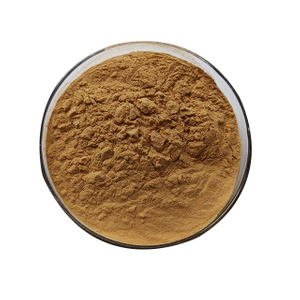 Echinacea Purpurea Extract Supplier