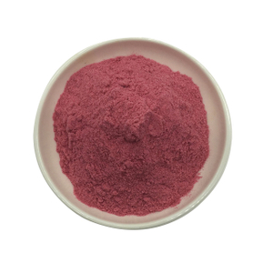 Spray dry blueberry powder